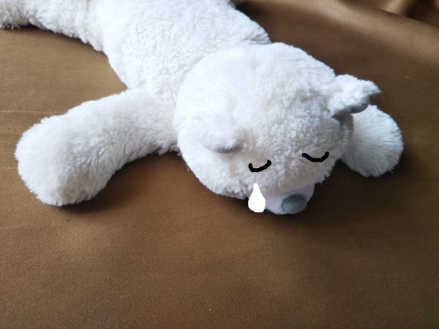 泣く熊のぬいぐるみ