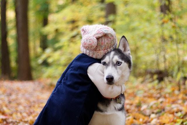 犬を抱きしめる少女