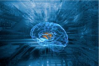 AI脳科学イメージ